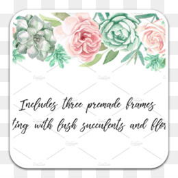 Garden Roses, Watercolor Painting, Watercolor Flowers, Text, Pink PNG image with transparent background