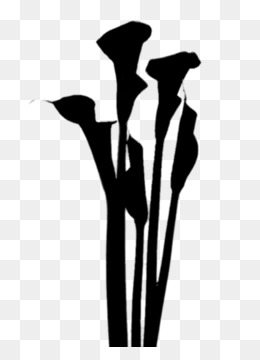 Flower, Plant Stem, Silhouette, Tree PNG image with transparent background