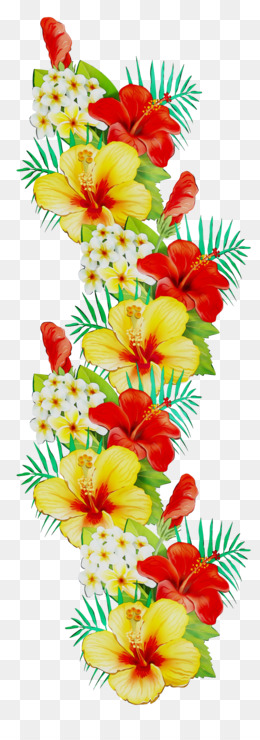 Floral Design, Flower, Cut Flowers PNG image with transparent background