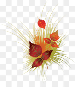 Autumn, Stock Photography, Royaltyfree, Red, Flower PNG image with transparent background