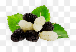 Recipe, Superfood, Blackberry, Food PNG image with transparent background