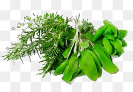 Food, Herb, Dinner, Plant, Leaf PNG image with transparent background